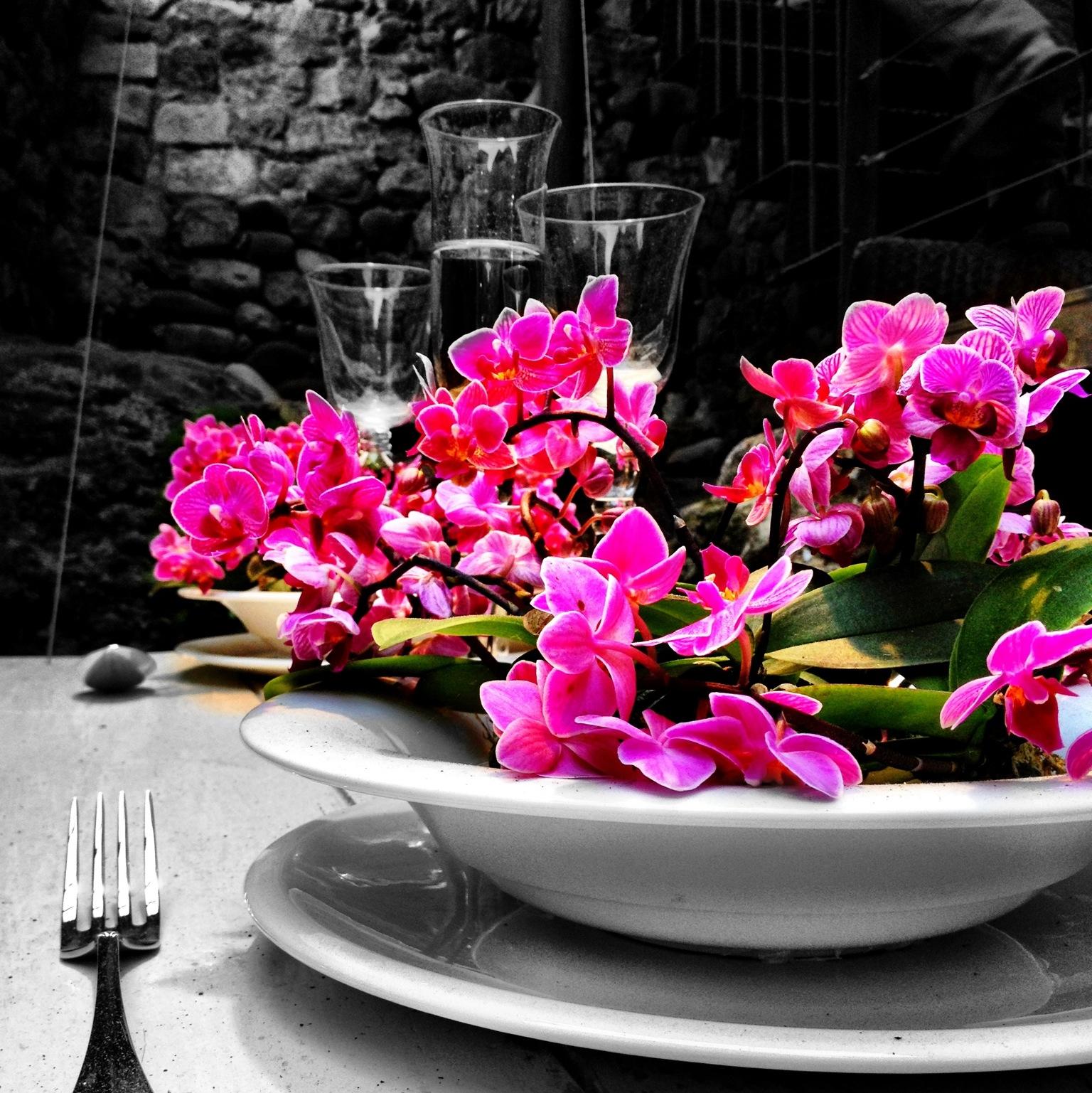Menús gastronómicos en Temps de Flors