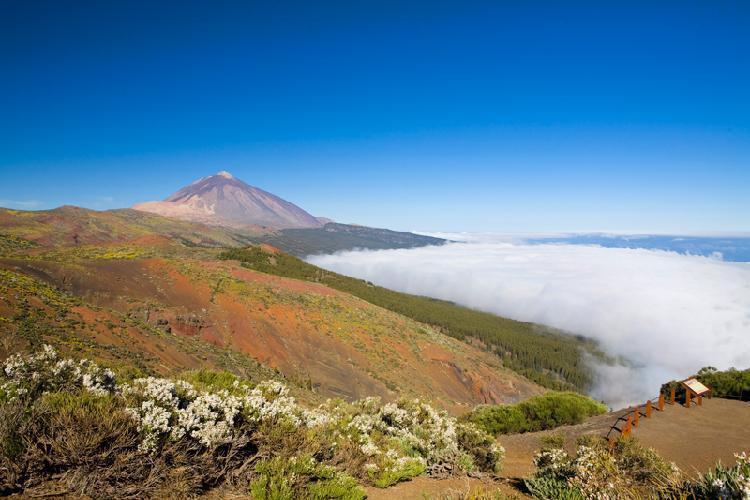 Visitar Tenerife - Tenerife turismo