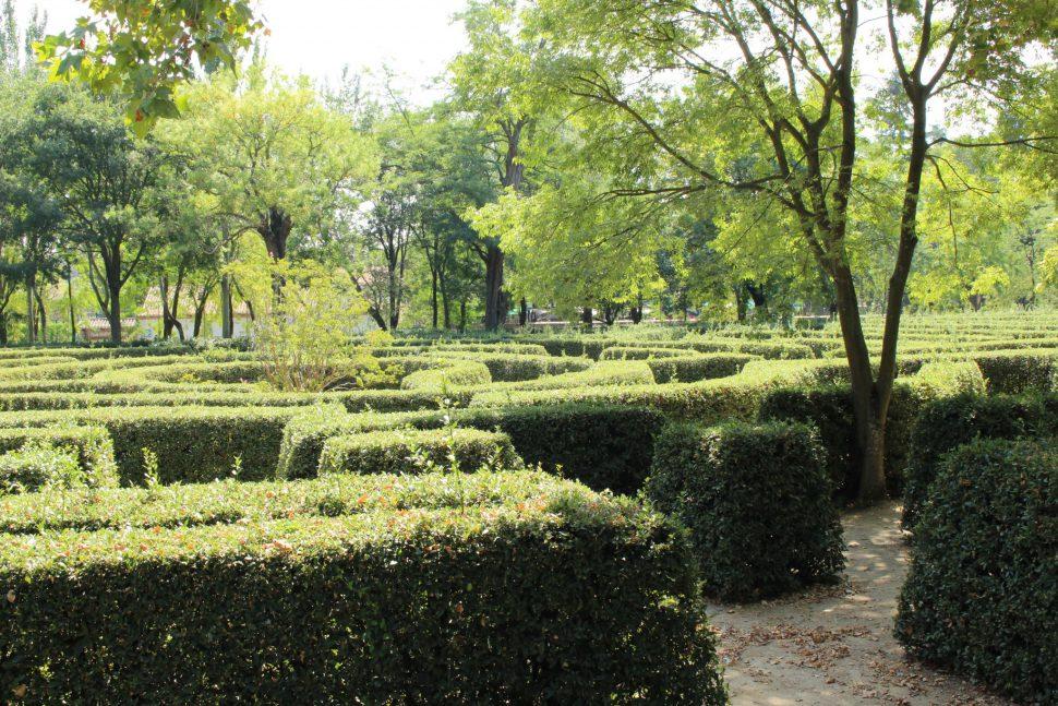 El Laberinto - Parque el Capricho fotos