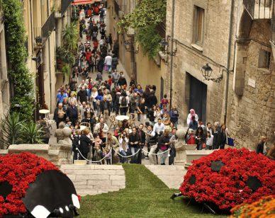Temps de flors. Turismo Girona