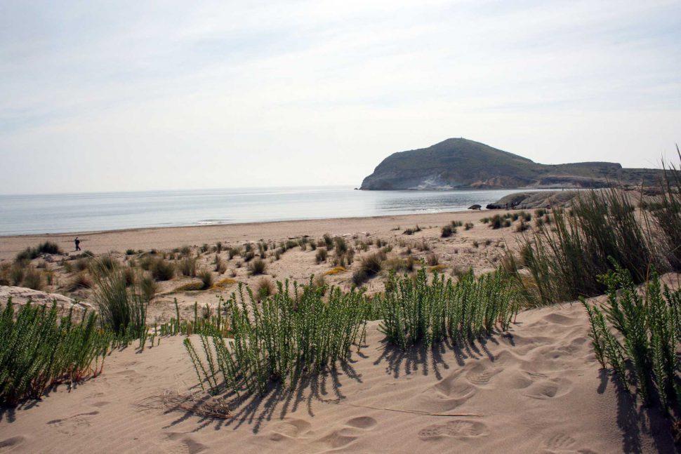 Playa los Genoveses en Parque Natural del Cabo de Gata. Turismo Almería