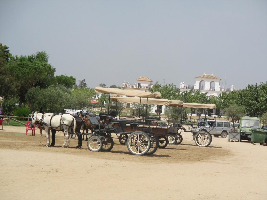 El Rocío. Turismo Huelva