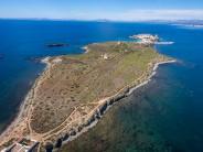 Isla de Tabarca, Reserva Marina en Alicante