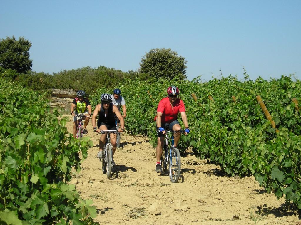 Ruta en bicicleta por Laguardia