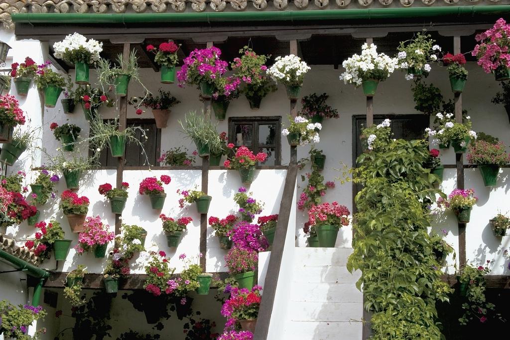 Patios de Córdoba. Qué visitar en Córdoba- viajar en mayo