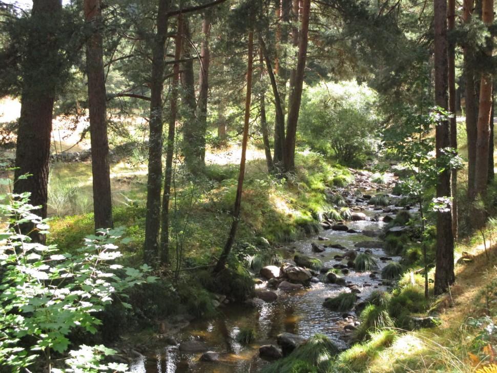 La Panera. Visitar Segovia y alrededores
