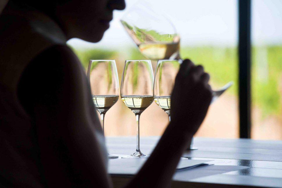 De ruta del vino por Rueda