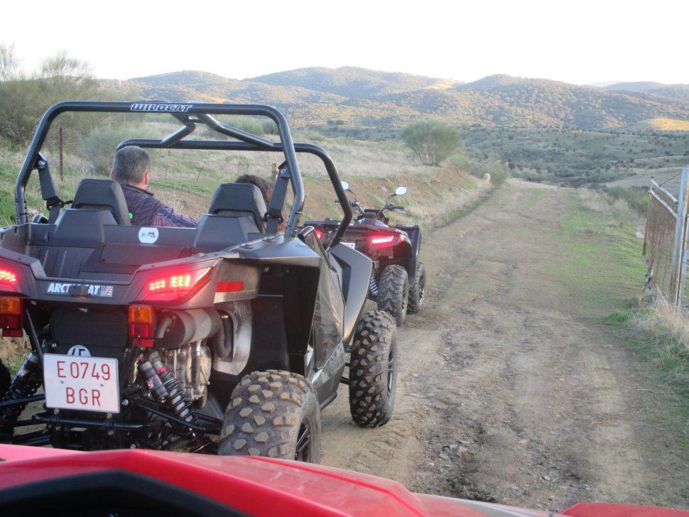 En Boggy por la Dehesa de Extremadura
