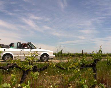 Carretera del Vino - Ruta del Vino del Penedès