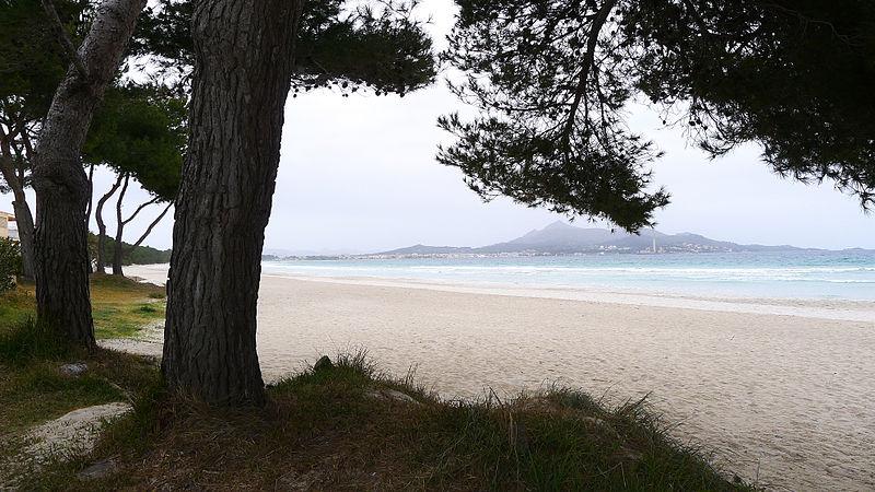 Baleares - playas para perros
