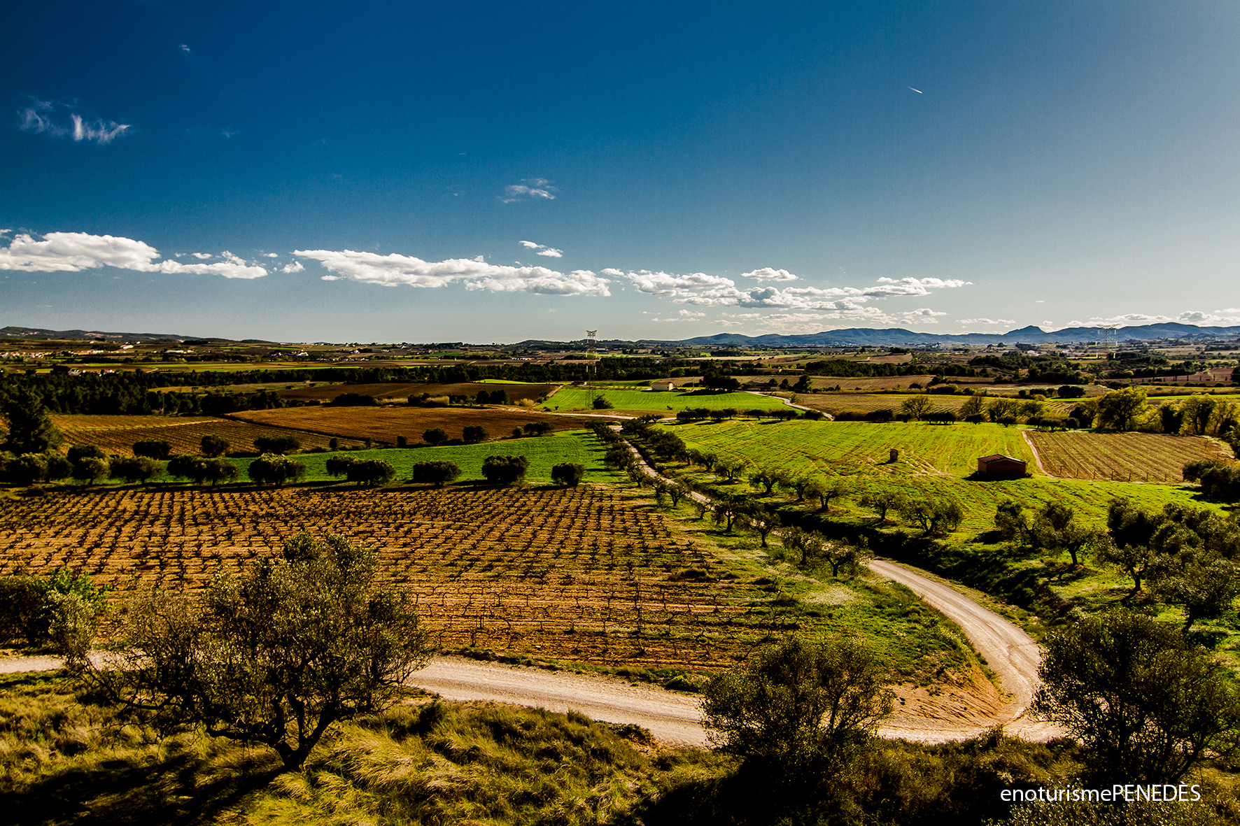 Mirador La Silla - Ruta del Vino