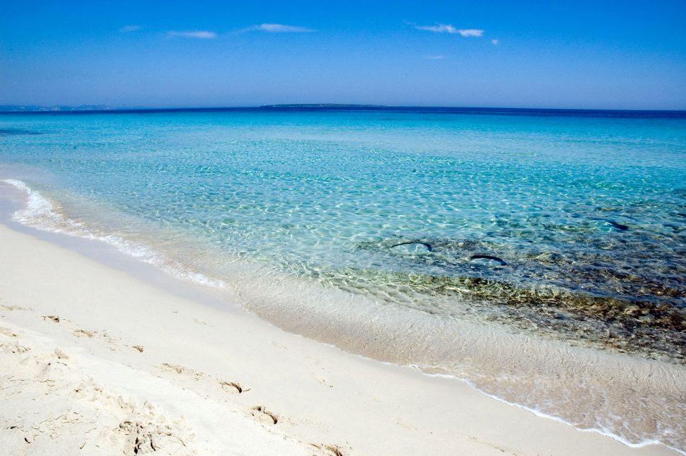 Playa de Levante - Formentera Playas