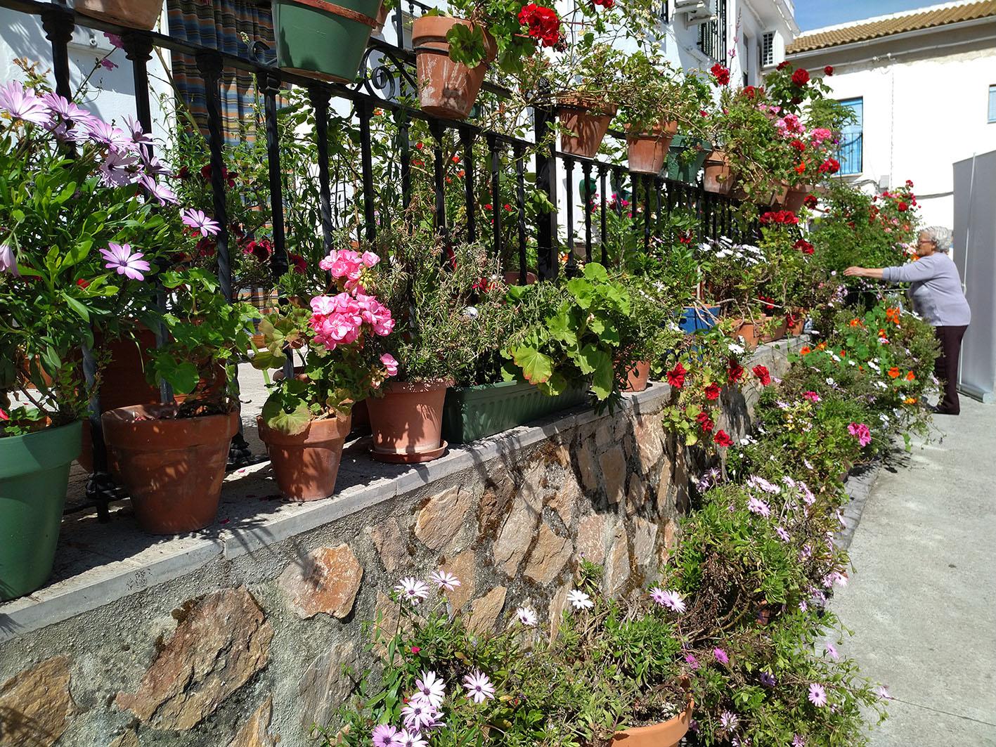 Festival de los Balcones y Rincones de Iznajar - Que ver en Iznajar - Visitar Cordoba