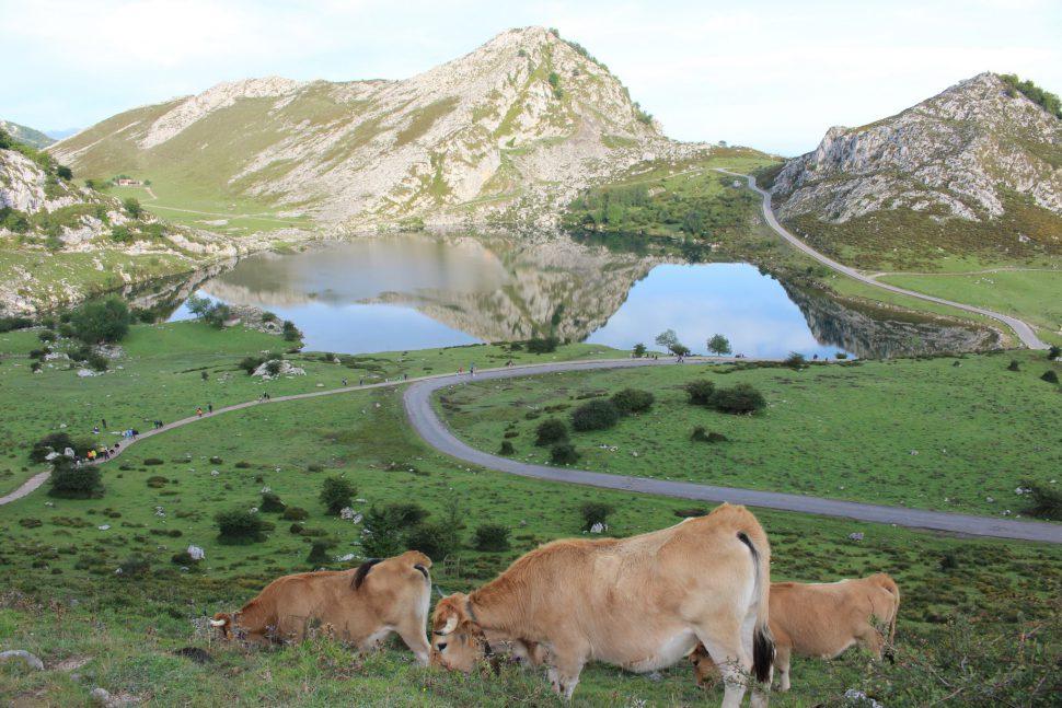 Lagos de Covadonga - destinos rurales fin de semana