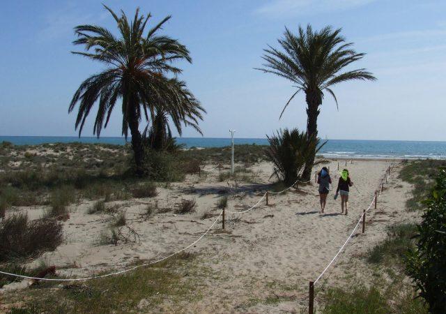 Playa del Pinar - mejores playas de Castellón